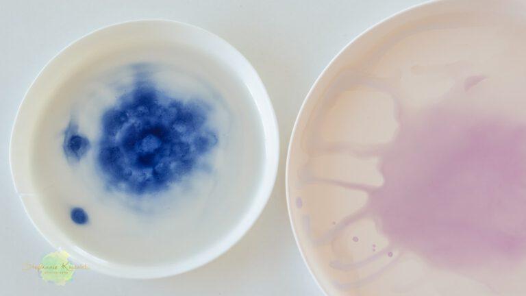 Porzellanworkshop 2: Porzellan dekorieren am 2.8.2020 // 10-12 Uhr